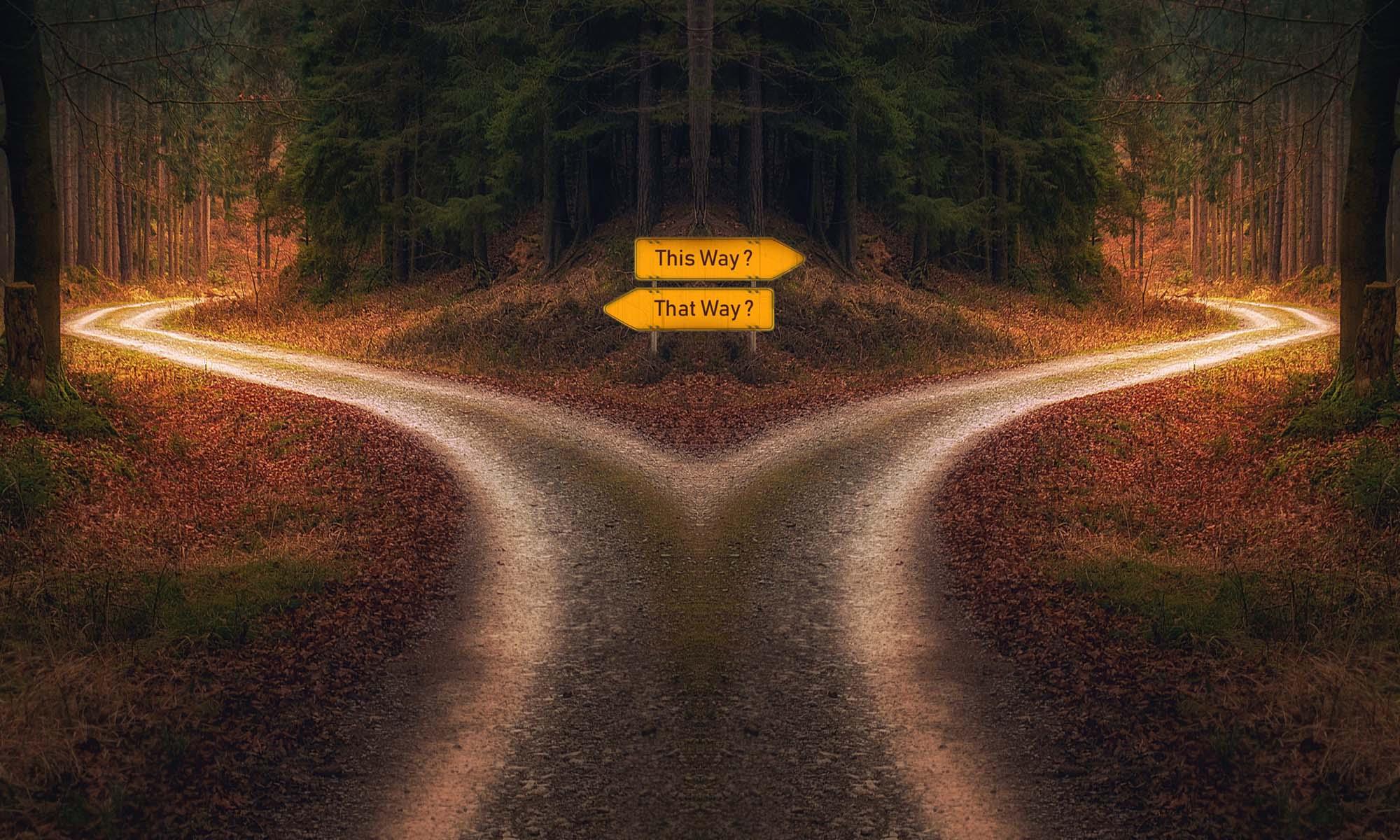 Vom schmalen und vom breiten Weg
